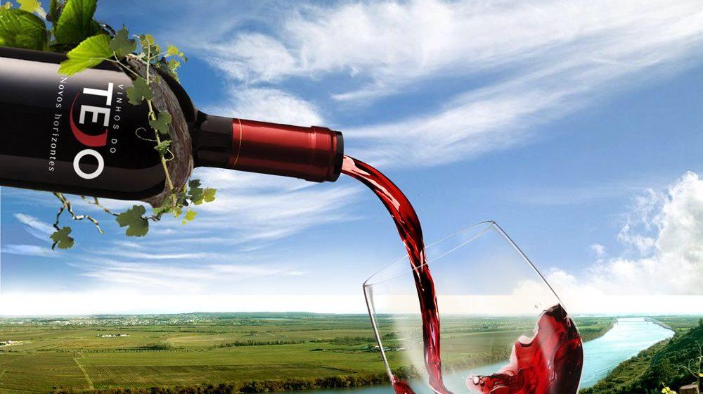 Região do Tejo aumenta em 71,8% a certificação dos seus vinhos