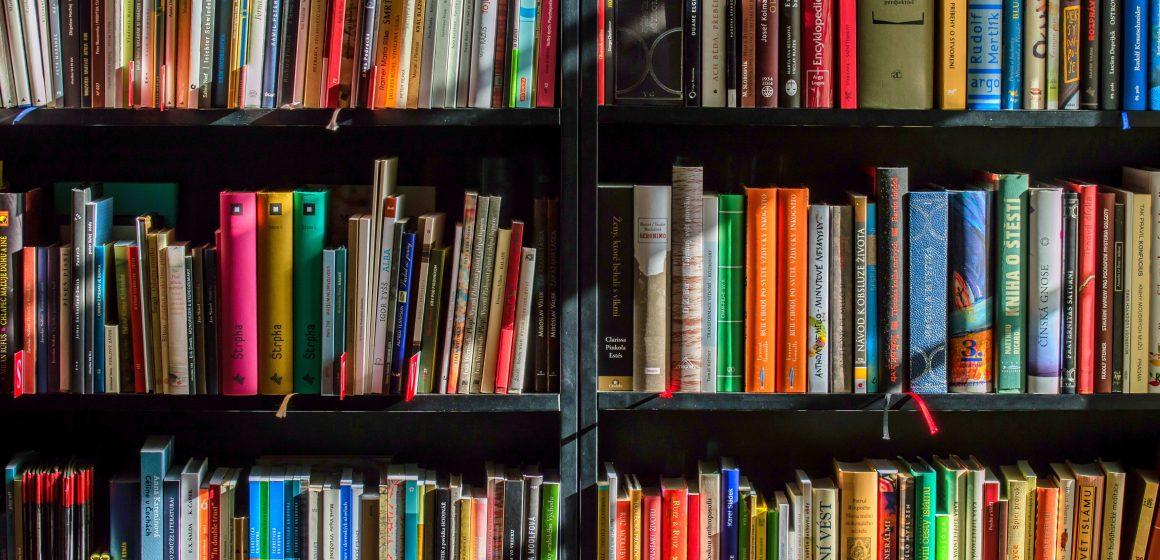 Novidades de julho na Biblioteca de Almeirim e Polo das Fazendas