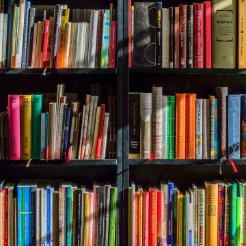 Concelho de Almeirim apresenta exposições e conselhos de leitura