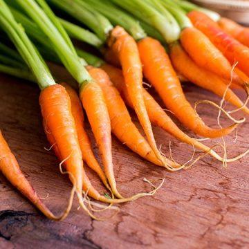 Empresa americana volta a pedir apoios para projeto de cenouras bebés