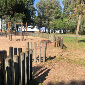 Novo susto: Árvore parte-se em parque infantil