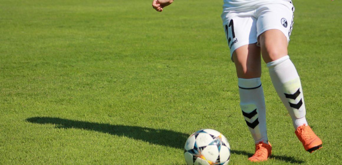 Campeonato Nacional em Fazendas de Almeirim já este domingo
